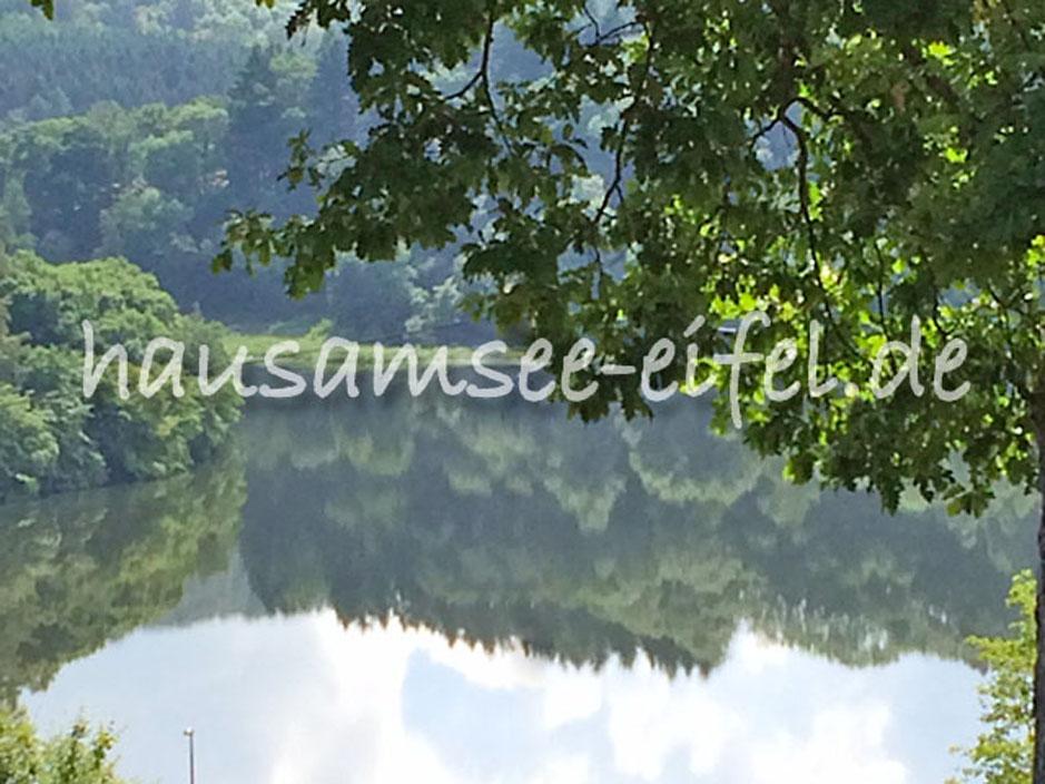 "Traumhaus am see  Haus am See ""Anita"" | Startseite | Eifel | Biersdorf"
